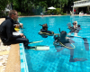 russian-idc-pattaya-june-2013-4